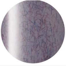 Presto 彩色甲油凝膠 SC-231